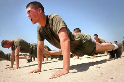 best push up workout1